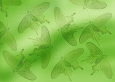 Green background. With black butterflies vector illustration