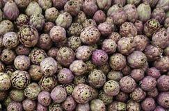 Green background of artichokes for sale in Italian market Stock Image