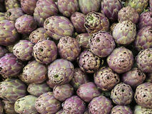 Green background of artichokes for sale in Italian market Stock Photography