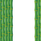 Green background with bamboo stems Royalty Free Stock Images
