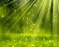 Green Background With Beams, Stock Photos