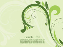 Green background with beautiful floral pattern Royalty Free Stock Photography