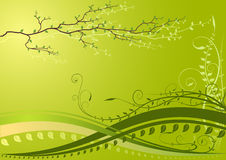 Green background with branch Royalty Free Stock Photo