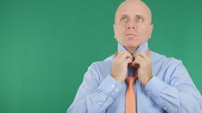 Green Background With Businessman Dress Arranging His Shirt and Tie. stock images