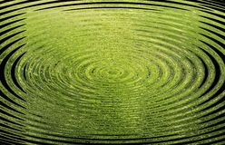 Green background with circles Royalty Free Stock Image