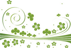 Green background with clover leaves Royalty Free Stock Photography