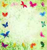 Green background with colorful butterflies frame Stock Images