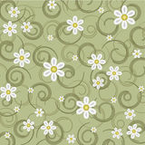 Green background in the daisies Stock Images