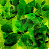 Green background with different leaves pattern. Watercolor artistic vector texture Royalty Free Stock Photo