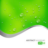 Green Background with Drops Stock Photography