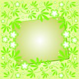 Green background with floral ornament Stock Images