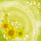 Green background with flowers Stock Photos