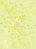 Green background with flowers and butterflies. Stock Image