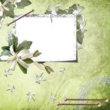 Green  background with frame Royalty Free Stock Photography