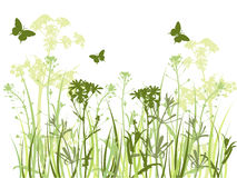Green background with grass and butterflies Royalty Free Stock Photos