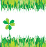 Green background with grass and clover. Over white Stock Photography