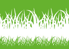 Green background with grass silhouette Royalty Free Stock Photography