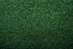 Green background grass texture felt new year wallpapers royalty free stock image