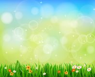 Green Background With Green Grass. And Sunburst Royalty Free Stock Photo