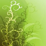 Green background with a green sprig. Abstract background with green sprigs Royalty Free Stock Image