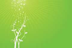 Green Background with Growing Plant. An illustrated background of a growing plant Royalty Free Stock Images