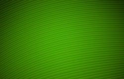 Green Background Illustration Royalty Free Stock Image