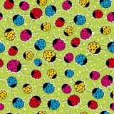 Green background with  ladybirds,  Royalty Free Stock Photos