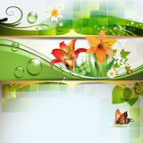 Green background with lily Royalty Free Stock Photography