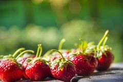 On a green background a lot of strawberry berries with tails and one big red berry place inscription stock photography