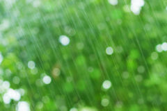 Green background: raindrops Royalty Free Stock Images
