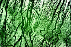 Green background with reflection Stock Images