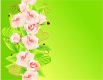 Green background with roses Stock Photo