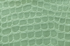 Green background from soft upholstery textile material, closeup. Fabric with pattern Royalty Free Stock Photography
