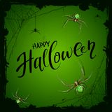 Green background with spiders and text Happy Halloween Royalty Free Stock Photos