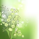 Green background with spring flowers Royalty Free Stock Images