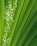 Green background with stars Royalty Free Stock Photography