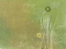 Green Background of stone with floral graffiti Royalty Free Stock Images