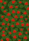 Green background with strawberry Stock Images