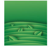 Green background template with leaves royalty free stock photos