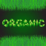 Green background with text made from leaves organic. Illustration with vegetative grasses border. Stock Photo