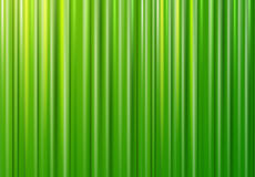 Green background texture. Vector green lines pattern Stock Photos