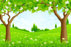 Green Background with Trees Stock Photo