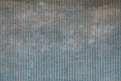 Green background wall texture, from brick and cement Stock Photo