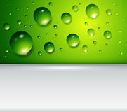 Green background with water drops Royalty Free Stock Photography