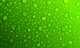 Green background of water drops Royalty Free Stock Photos