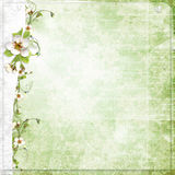 Green Background With Apple Flowers