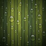 Green background of wood texture, ecological Royalty Free Stock Photography
