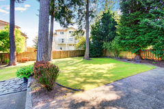 Green backyard garden with trees and well kept lawn. Royalty Free Stock Images
