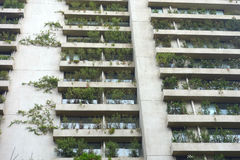 Green Balconies Royalty Free Stock Photography