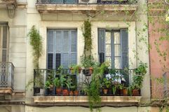 Free Green Balconies In Barcelona Royalty Free Stock Images - 93353459